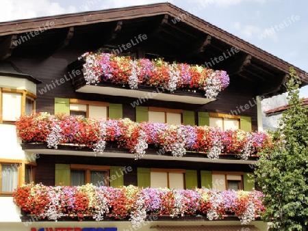 natur tirol gemeinde ellmauamwildenkaiser haus hausfront balkon blumen. Black Bedroom Furniture Sets. Home Design Ideas